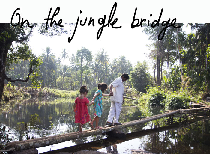 JungleBridge+txt