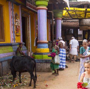 voyage de l'illustratrice en Asie, Inde